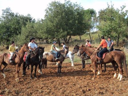 Un gruppo per amare i cavalli