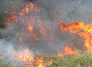 fiamme Contadino muore nella campagne di Savelli circondato dalle fiamme