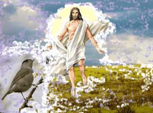 albdl-gesu-300x223 Il senso della Pasqua di Risurrezione nel volo di una capinera