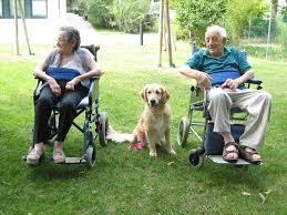 albfl1234 Un popolo che non custodisce gli anziani non ha futuro né memoria