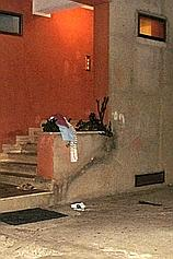 7 Agguato mortale a Palmi: un morto. Ferito un avvocato penalista