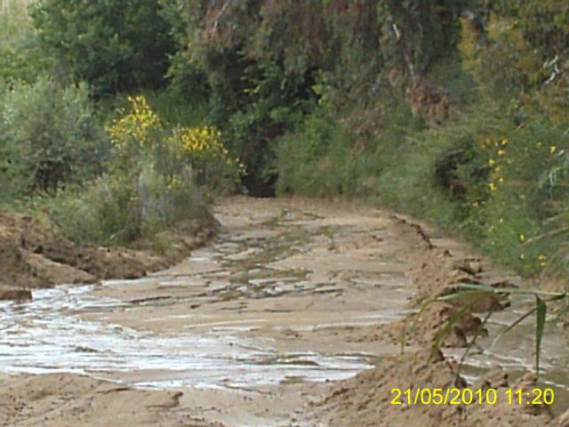 IMAG0006v002 Aggiornamento viabilità delle contrade di campagna di Bisignano