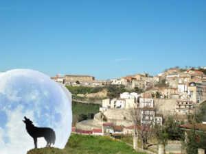 bisignano_lupo-300x225 A Bisignano forse vive un lupo