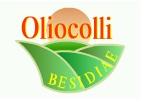 oliocolli L'Oliocolli Besidiae sarà presto rilanciata
