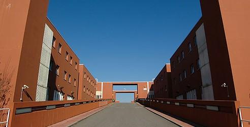 unical1 Università: rinvio inizio anno facoltà di Reggio e Cosenza