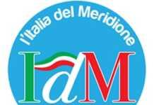 Logo Idm