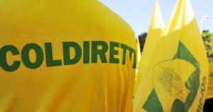 coldiretti-caklabria-cz-300x158 Agricoltori e Coldiretti in protesta