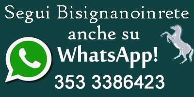whatsapp-logo-bir Seguici su Whatsapp!