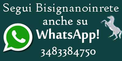 whatsapp-logo-bir Contatti