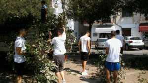 19250128_10209337797697765_635747052_o-300x169 4 guagliuni... e tanti altri all'opera per ripulire il viale Roma