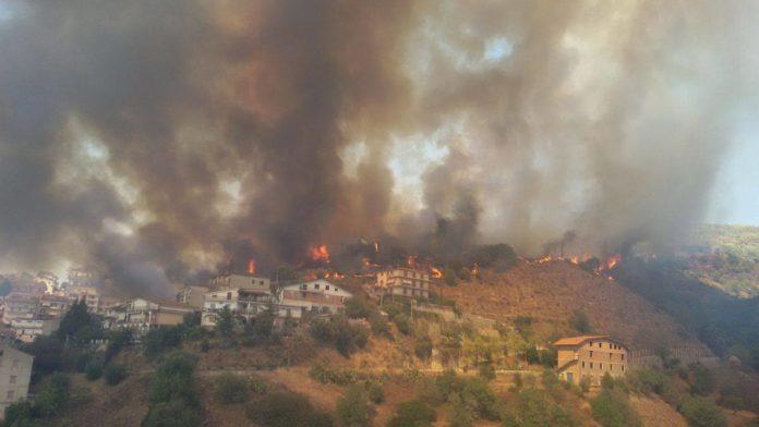 incendio_luzzi Spaventoso incendio a Luzzi, la disperazione dei residenti
