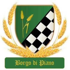 borgo_di_piano_logo_quartiere-300x300 Borgo di Piano - Quartiere di Bisignano