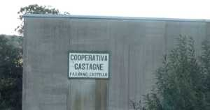 copp-castagna-immagina-300x158 Castagna, la passione della Cooperativa di Fagnano
