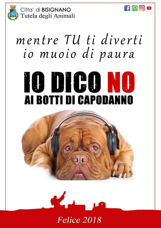 no-botti-2018-2 Capodanno, il sindaco di Bisignano firma l'ordinanza anti-botti